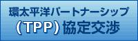 環太平洋パートナーシップ(TPP)協定交渉